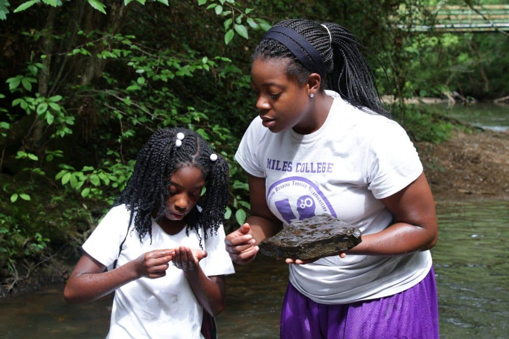 """Bham Now's Nature Roundup – """"rivers"""" edition – June 8th"""