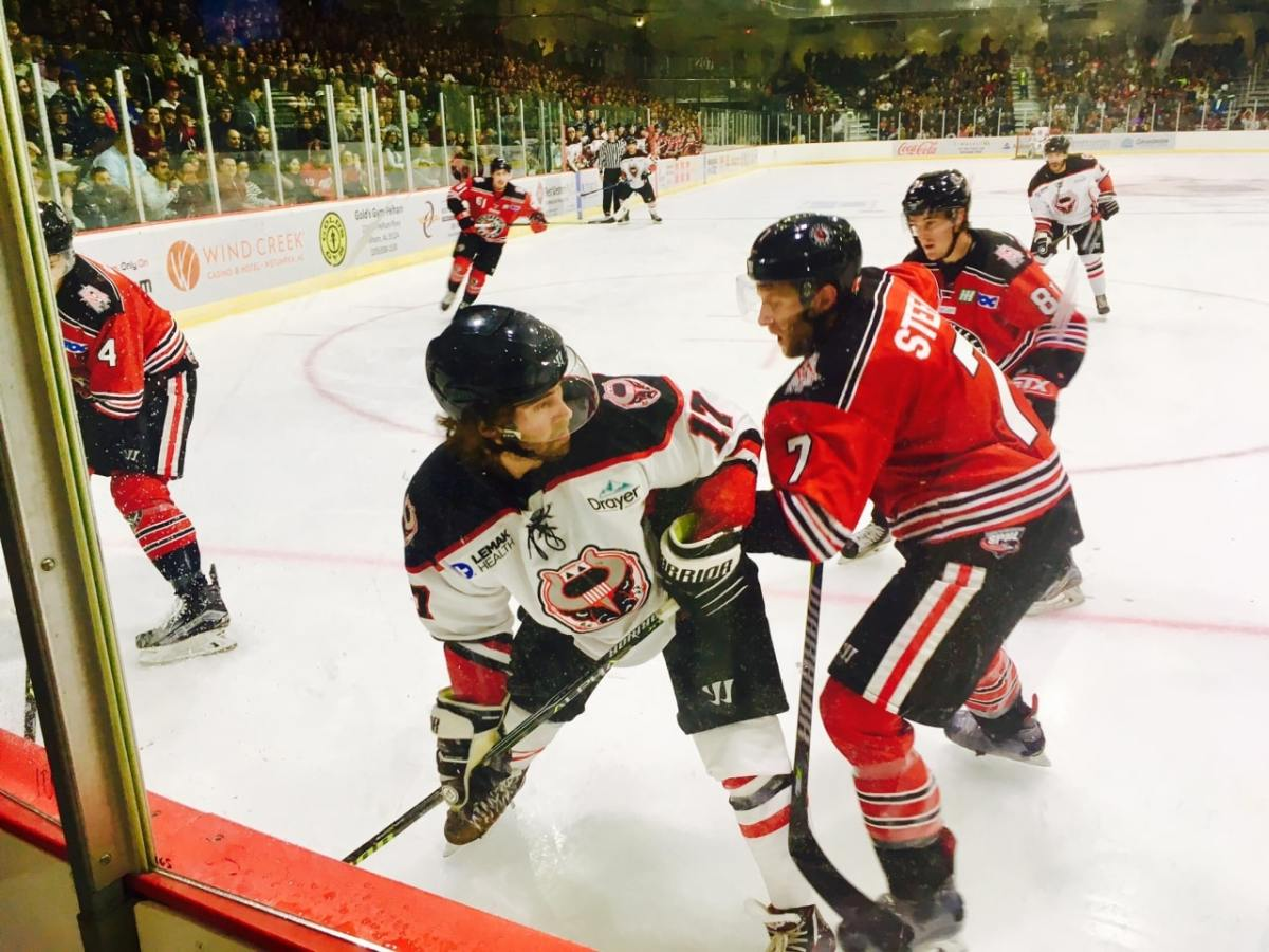Birmingham Bulls are back! Home games draw near capacity crowds (photo gallery)