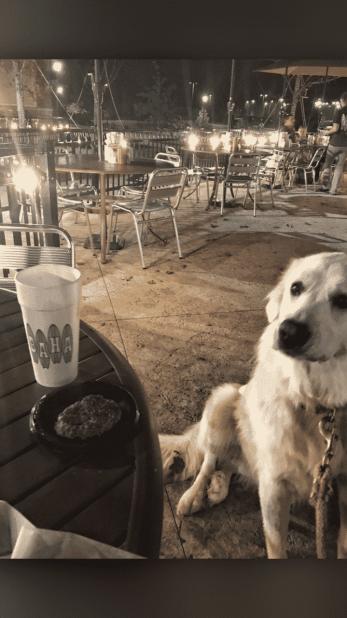 Barkley restaurant