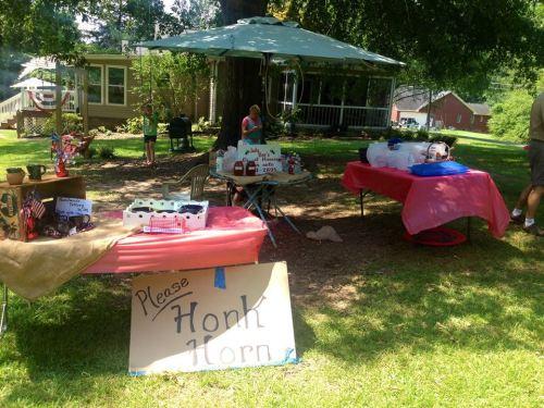 Birmingham, Alabama, U-Pick, June, Blueberries and Blackberries, Judy Bee's Honey and Berry Farm