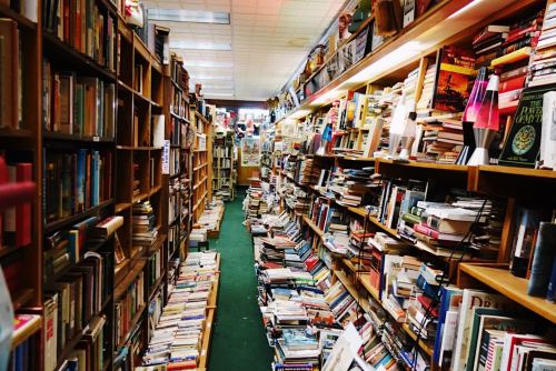 11 Bookstores Scattered Across Birmingham That Are Worth Checking Out Bham Now