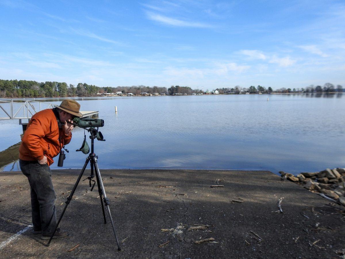 Mallard-Fox Creek Wildlife Management Area/Wheeler Dam (NABT #1, 2)
