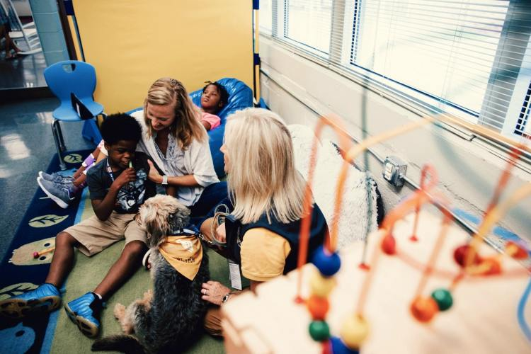With Animal-Assisted Therapy, Hand in Paw helps at-risk young people develop healthy relationships