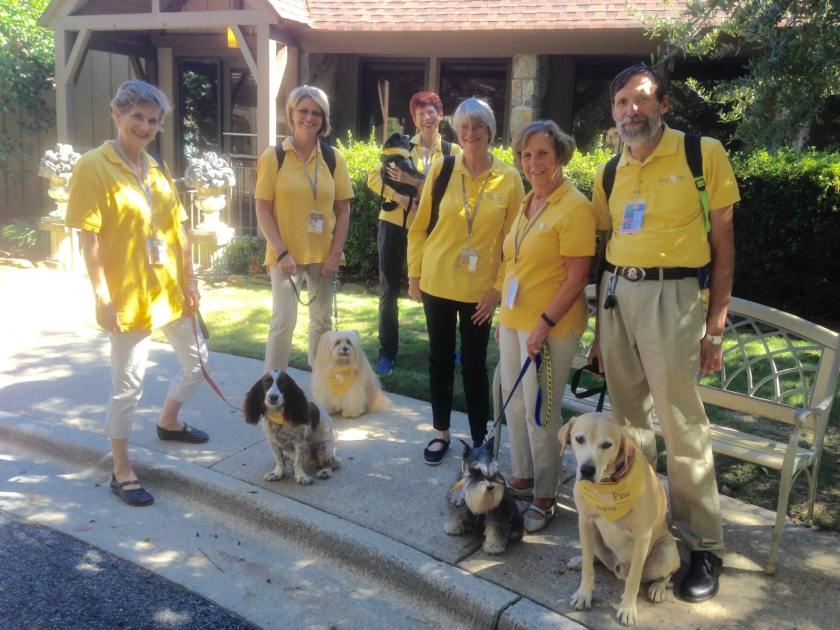 Hand in Paw's Animal-Assisted Therapy family is growing