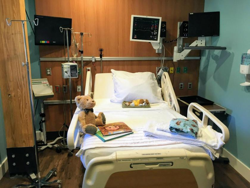Hand in Paw's new hospital simulation room makes on-site advanced training for Animal-Assisted Therapy Teams possible