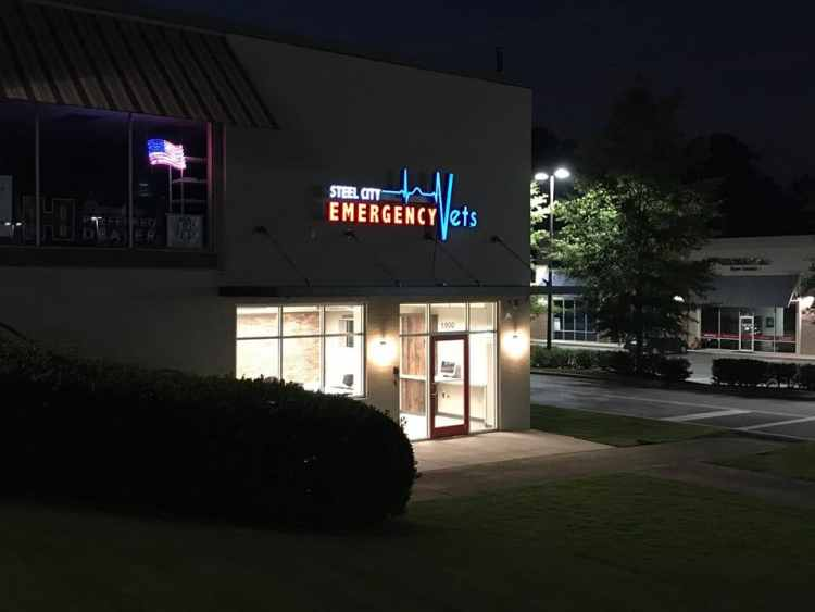Birmingham, Alabama, emergency vet clinic, Steel City Emergency Vets, Hoover