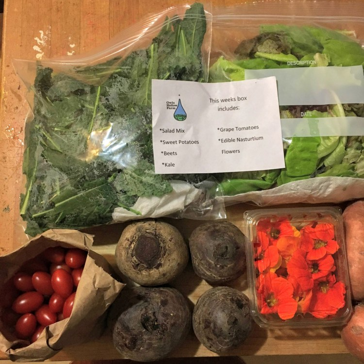 Whole30 in Birmingham guide: CSA shares