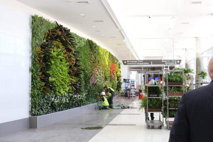 "One of the 5 Birmingham artists is Murray Johnston. While she usually makes quilts, she worked with a team out of Vancouver to design a ""Living Wall"" at the Birmingham Airport."