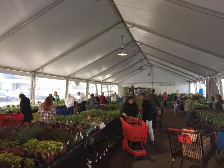 Alabama, Birmingham Botanical Gardens, Spring Plant Sale, Brookwood Village