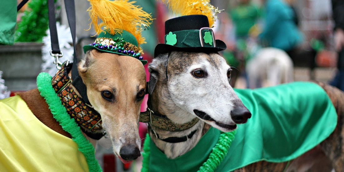 50 events happening this weekend in Birmingham, including 12 St. Patrick's Day celebrations