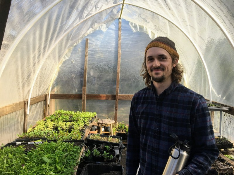 Trevor in a greenhouse used for indoor herb growing