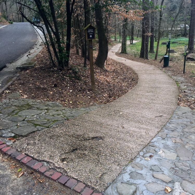 Mountain Brook's Jemison trail is a wheelchair accessible trail if you have the right kind of equipment.