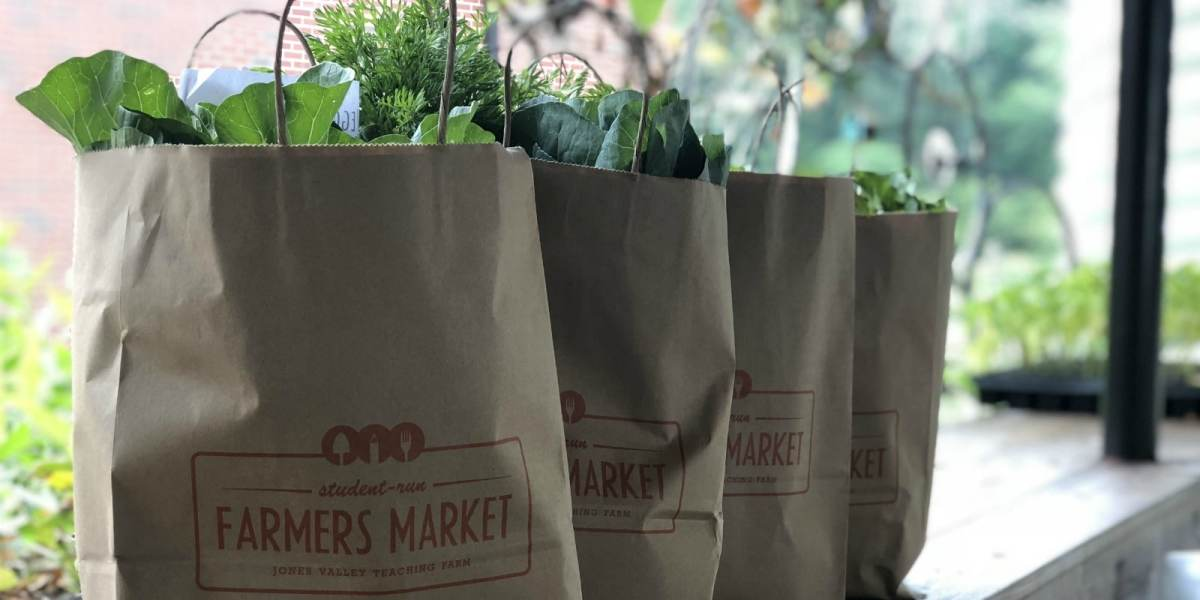 Your guide to 8 Birmingham-area farms offering CSA shares this Spring