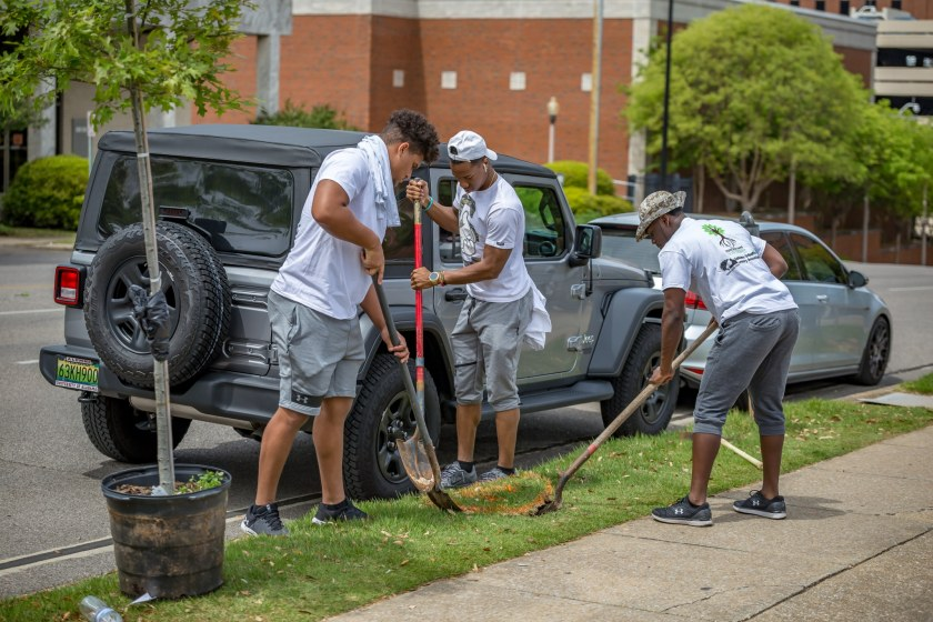 UAB football players planting a tree on campus