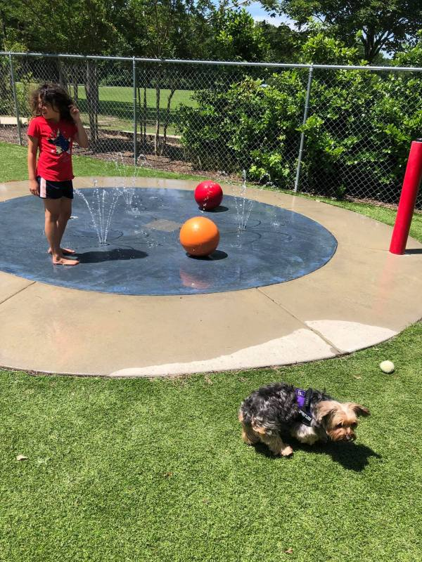 There's a splash pad for dogs in Alabaster.