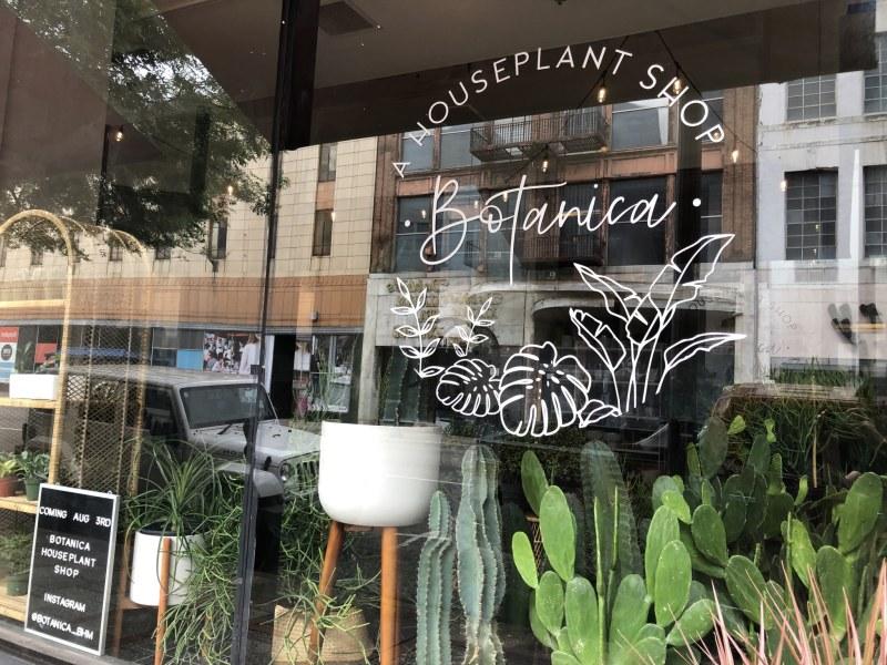 Window display of Botanica and Verra Studios in Birmingham, AL