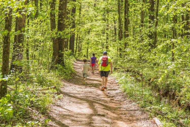 Man walking on trail behind a boy and girl