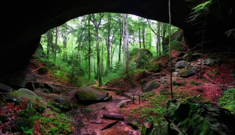 The Natural Bridge of Alabama in Winston County