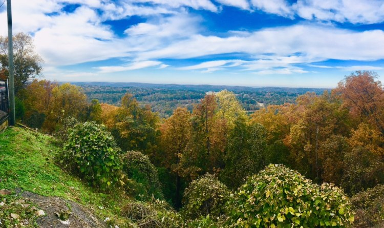 Birmingham, Driver's Way, fall drives, fall season, leaves, Hoover, Bluff Park, Tip Top Grill