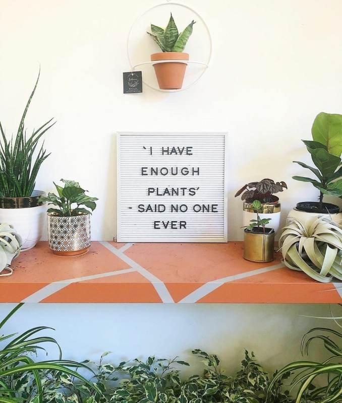 botanica instagram