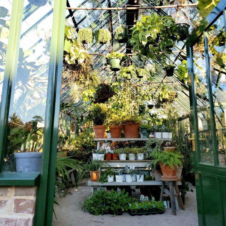 shoppe greenhouse