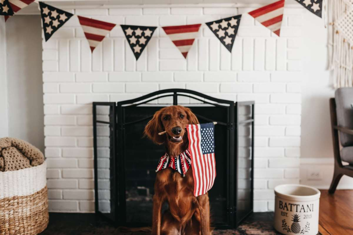 Spending the Fourth of July at home? 7 ways to celebrate