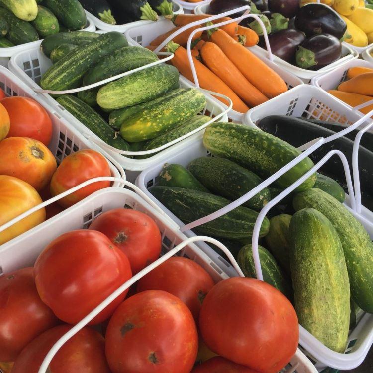 Birmingham, Alabama Farmers Market