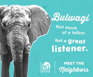 Bulwagi the Elephant