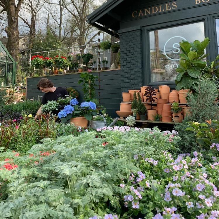 Plants and flowers outside of Shoppe Green House in Birmingham, AL - Instagram-worthy photo spots in Birmingham