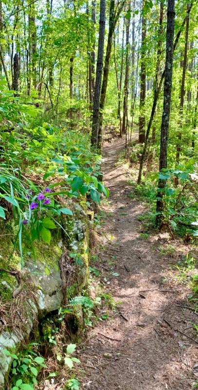 cahaba river park trail