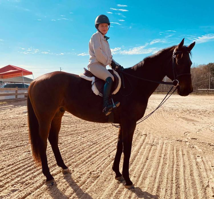 Lachlan farms horseback riding