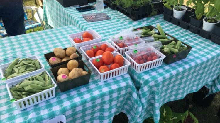 Bessemer Farmers Market produce on table