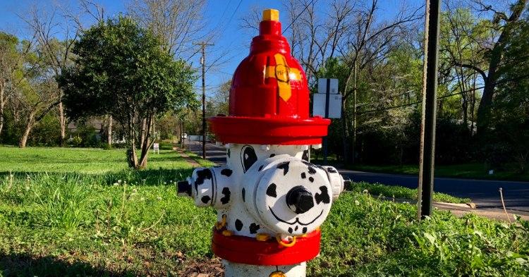 fire hydrant, Pendleton Hydrant Parade