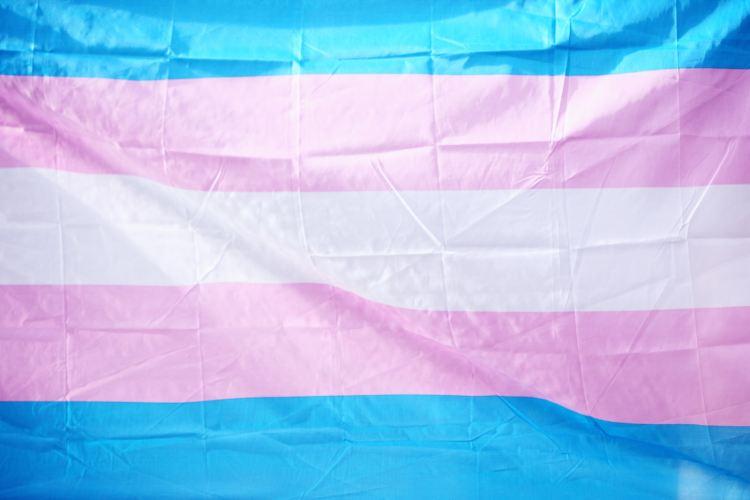 LGBTQ+, trans flag