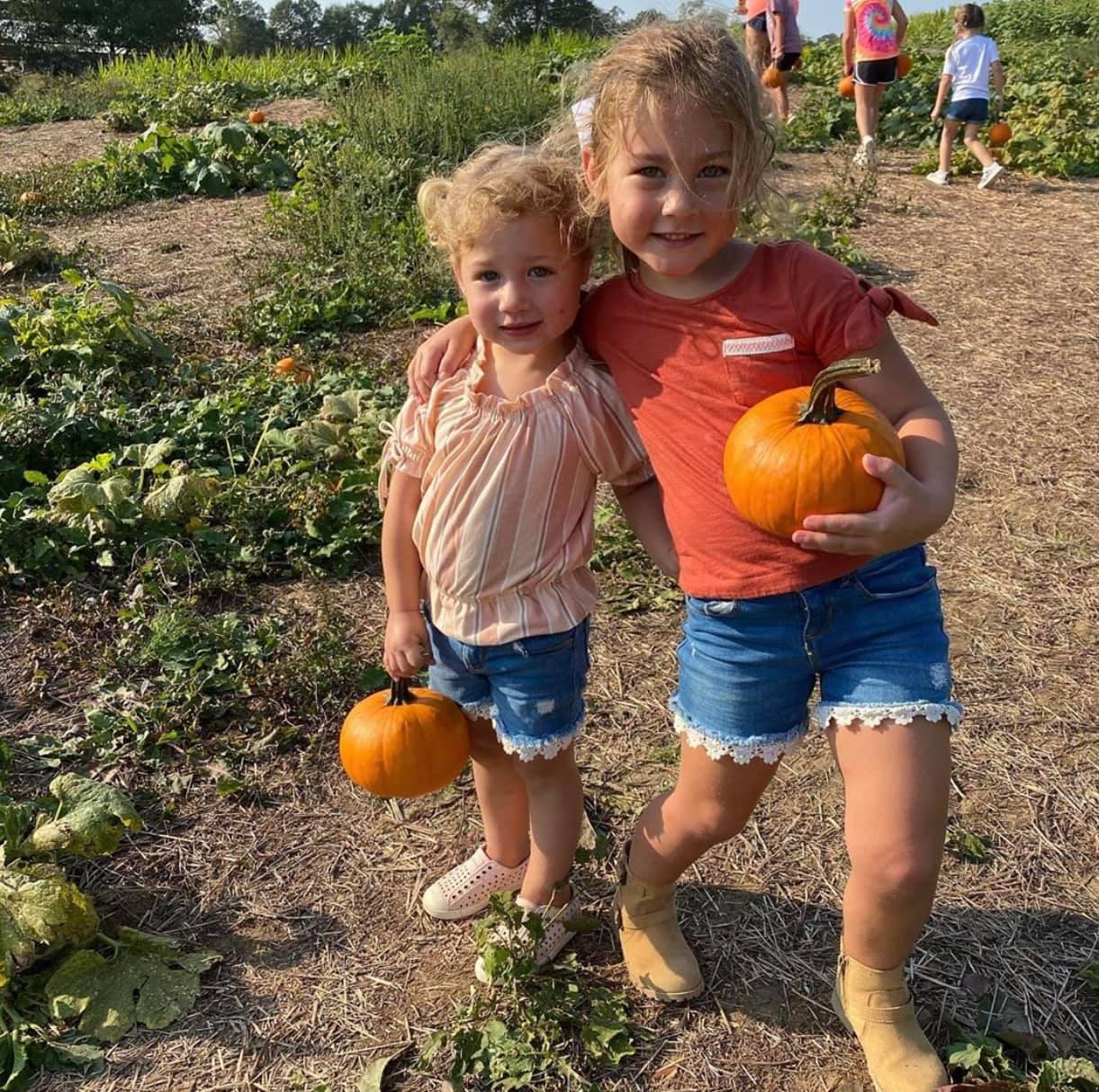 4D Farm, Pumpkin Patch