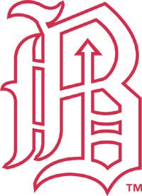 New Barons secondary logo - Courtesy of Birmingham Barons
