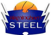 Birmingham Steel logo