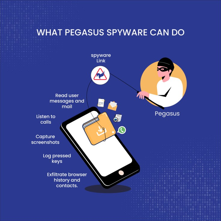 Software pegasus
