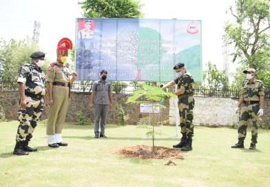 सीमा सुरक्षा बल का वृक्षारोपण अभियान  अभियान के दौरान 2.5 करोड़ पौधे लगाए
