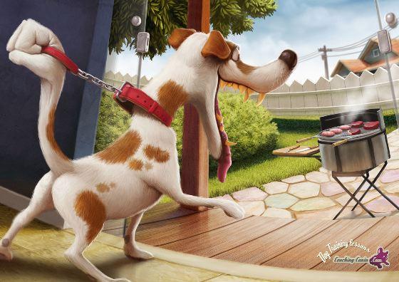 Coaching Canine - Barbecue.jpg