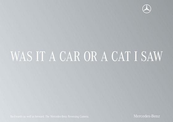 Mercedes - Cat