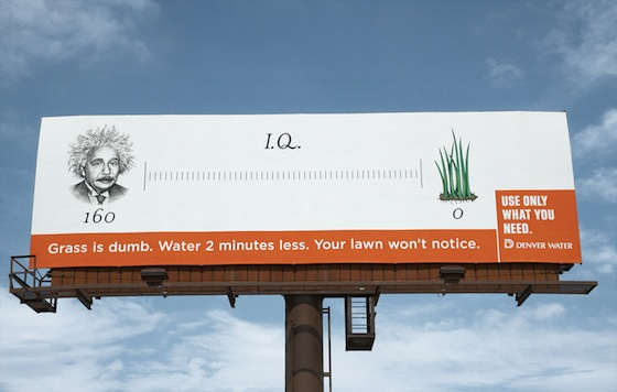 Denver Water-GrassISDumb-IQ.jpg