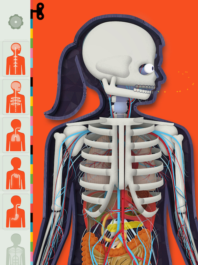 01-tinybop-humanbody-systems