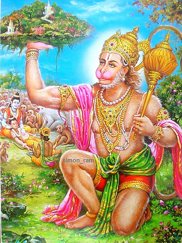 In the epic poem of Ramayana, the battle wounded Lakshmana is resuscitated by a medicinal herb known as 'SANJIVANI', fetched by mighty Hanuman.Ramayana also describes the Art of Diagnosing the Medical Condition known as 'SHOCK' from the facial appearance of the Battle Casualty.