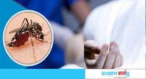 গত ২৪ ঘণ্টায় ১০৫ ডেঙ্গু রোগী হাসপাতালে