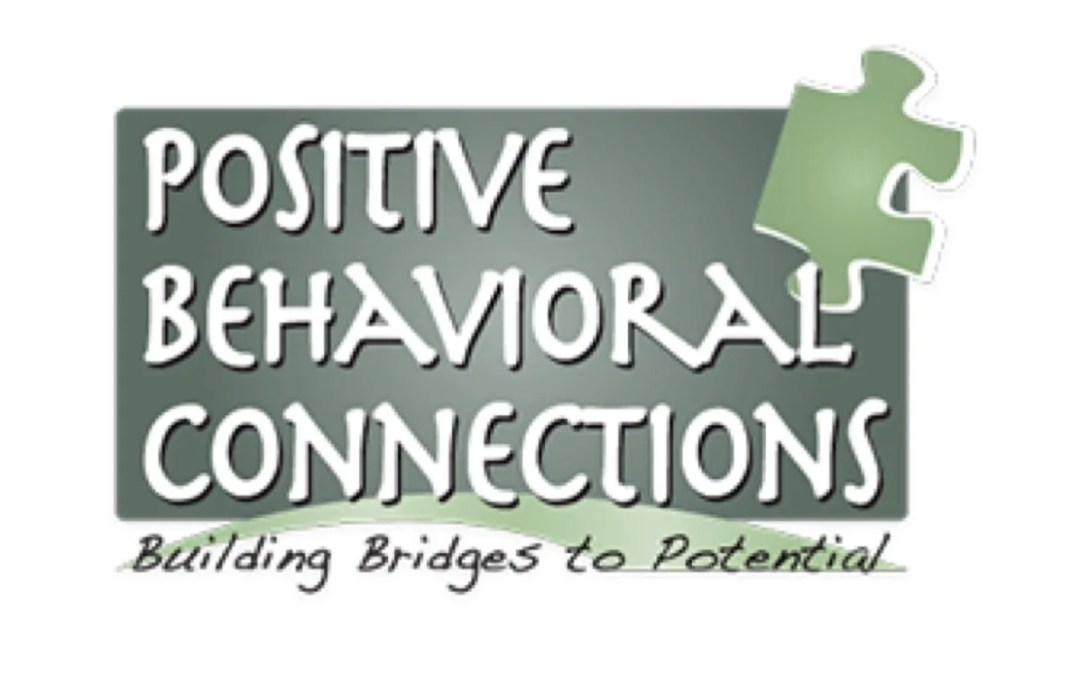 Behavioral Health Center of Excellence Honors Positive Behavioral Connections with Award of Distinction