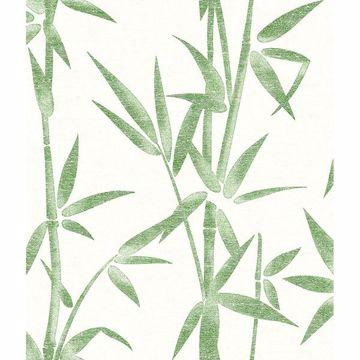 bamboo wallpaper bamboo wall