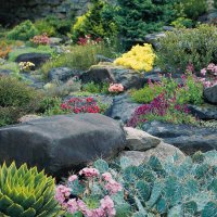 Landscaping with Rocks and Stones