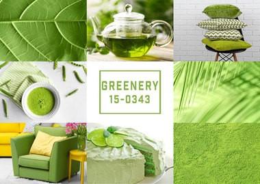 Color greenery