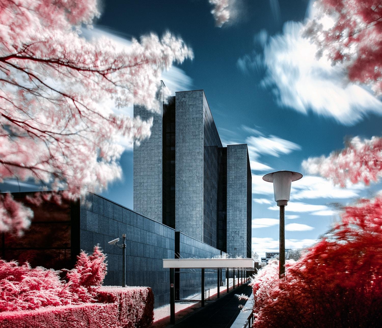 Utopia by Apo Genc